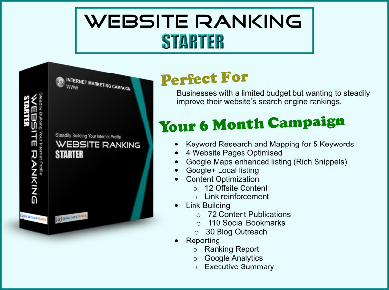 grab more traffic website ranking starter - how to get more customers