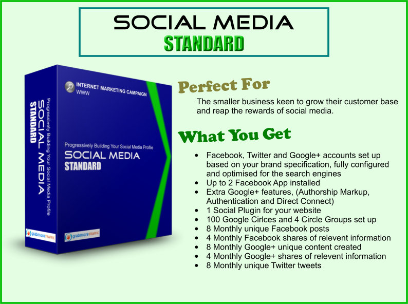 grab more traffic social media standard - how to get more customers